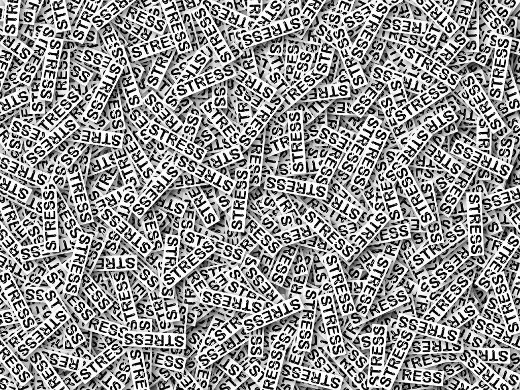 """Ein ganzes Bild voller Papierstreifen, auf denen nur das Wort """"STRESS"""" steht (Foto: pixabay.com)"""