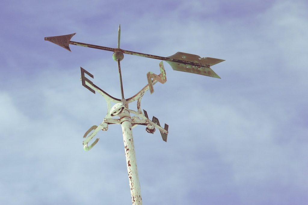 Windrose mit den Himmelsrichtungen und einem großen Pfeil, der nach links zeigt