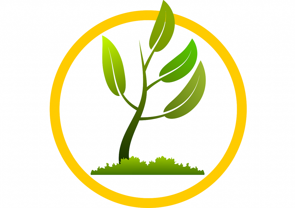 Symbol des Wachstums in Form eines großen grünen Triebes mit großen grünen Blättern, der aus einem Gebüsch hervorwächst und von einem gelben Kreis umgeben ist