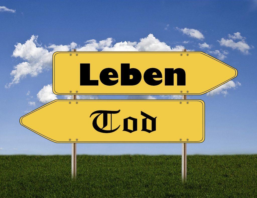 """Zwei gelbe Straßenschilder: nach rechts """"Leben"""", nach links """"Tod"""""""