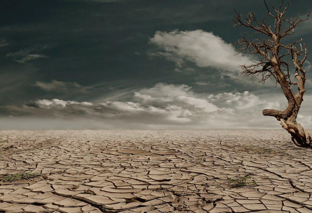 Trockene Wüstenlandschaft unter dunklem bewölkten Himmel