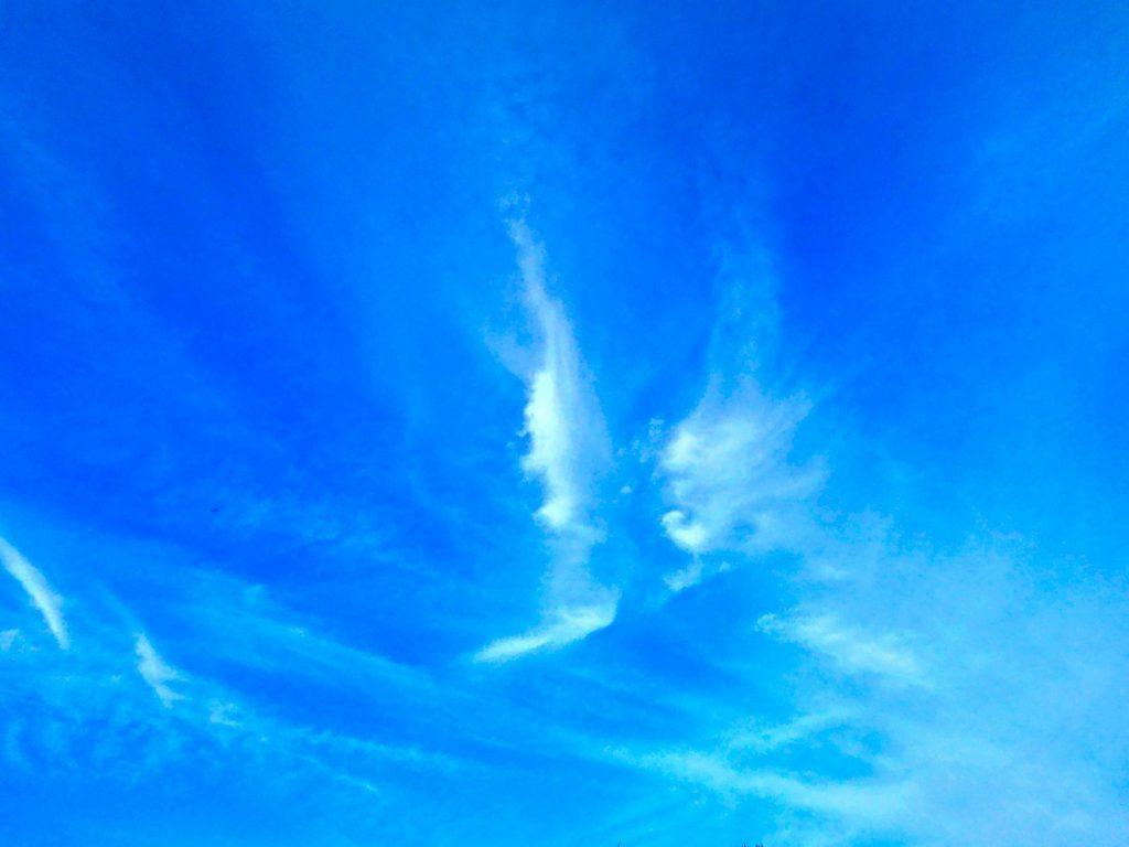 Mit Engelsflügeln in den Himmel fliegen: Wolken am Abendhimmel, die wie Engelsflügel geformt sind