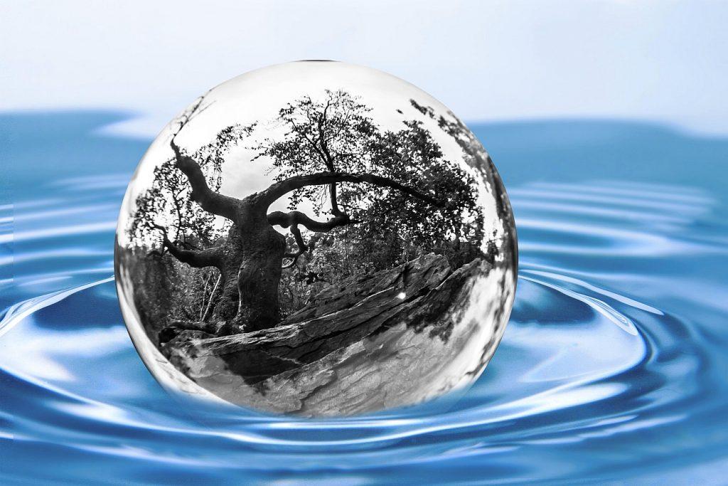 Baum und Quelle: In blauem Wasser schwimmt eine Kugel, in der sich ein knorriger, evtl. abgestorbener Baum spiegelt