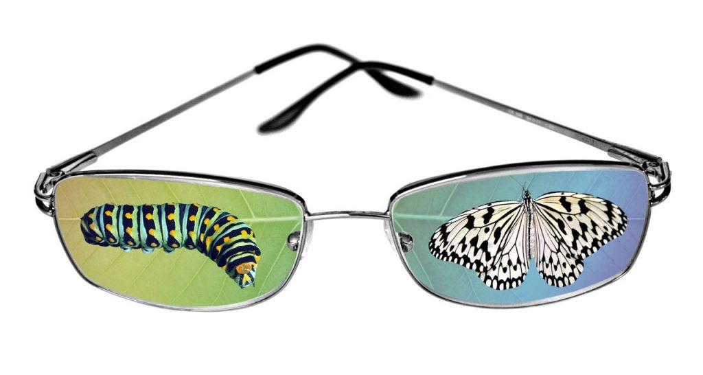 Von der Raupenexistenz zum Schmetterlingsleben: Eine Brille, auf deren einem Glas eine Raupe und auf dem anderen ein Schmetterling abgebildet sind