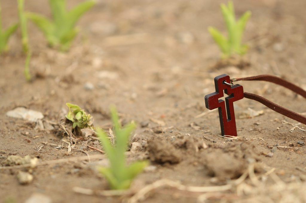 Ein kleine Umhängekreuz liegt auf der Erde zwischen frischen Trieben