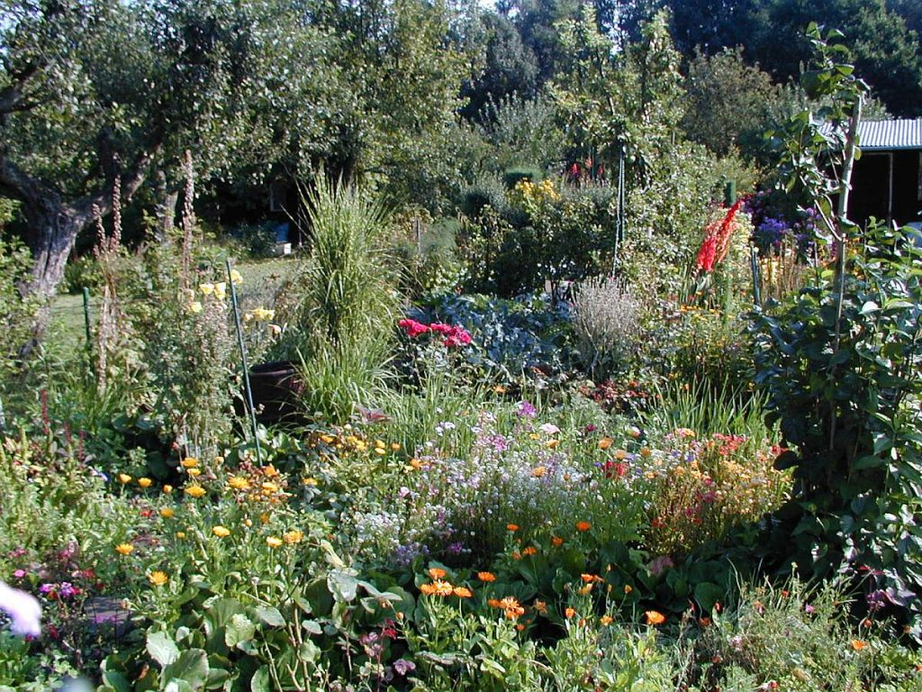 Gartenimpressionen vom Kleingartenverein Gartenfreunde am Waldbrunnenweg