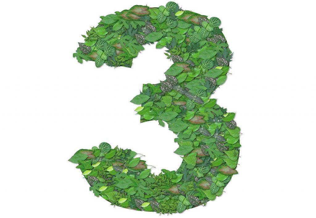 Eine aus Blättern geformte große grüne Drei