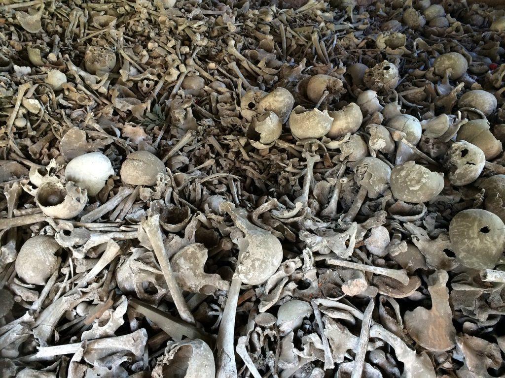 Ein Feld voller Totengebeine