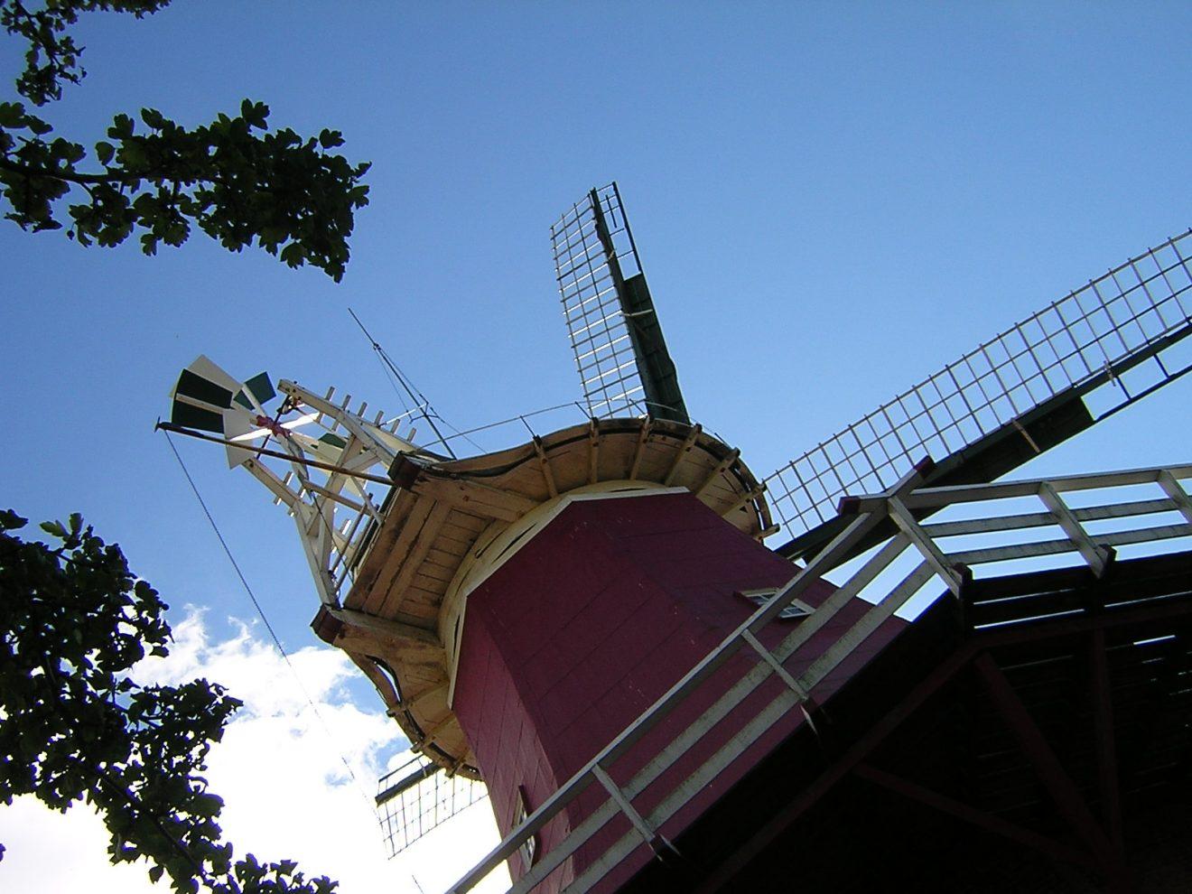 """Die Windrose am """"Hinterkopf"""" der Windmühle"""