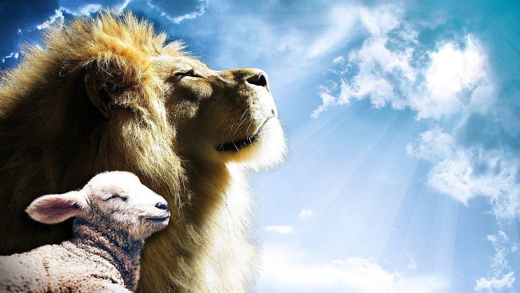 Ein Lamm und ein Löwe aneinandergeschmiegt vor einem blauen Himmel mit Sonnenstrahlen