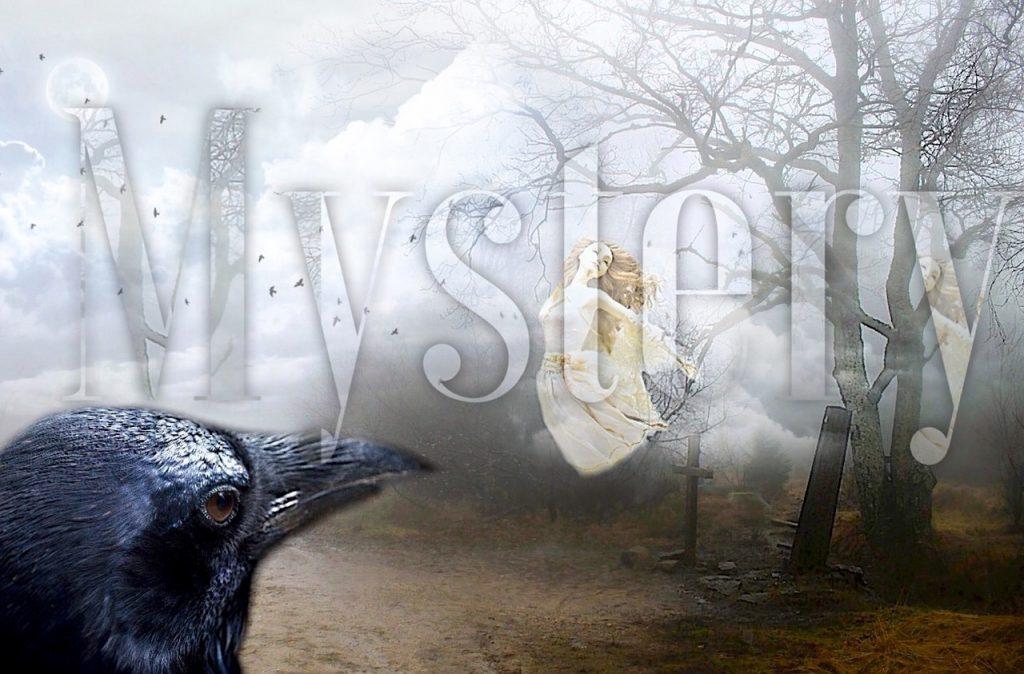Ein nebelhaftes Bild mit einer Krähe vorn und feenhaften Wesen im Dunst