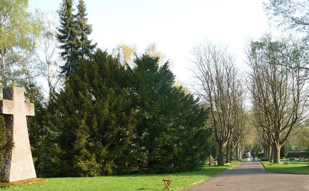 Das große Steinkreuz auf dem Neuen Friedhof am Rodtberg in Gießen