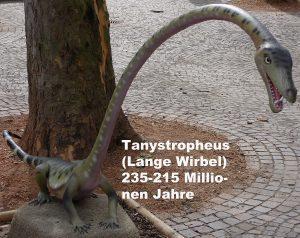 Der kleine Dinosaurier Tanystropheus mit dem Schlangenhals