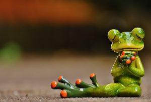 Frosch in betender Haltung