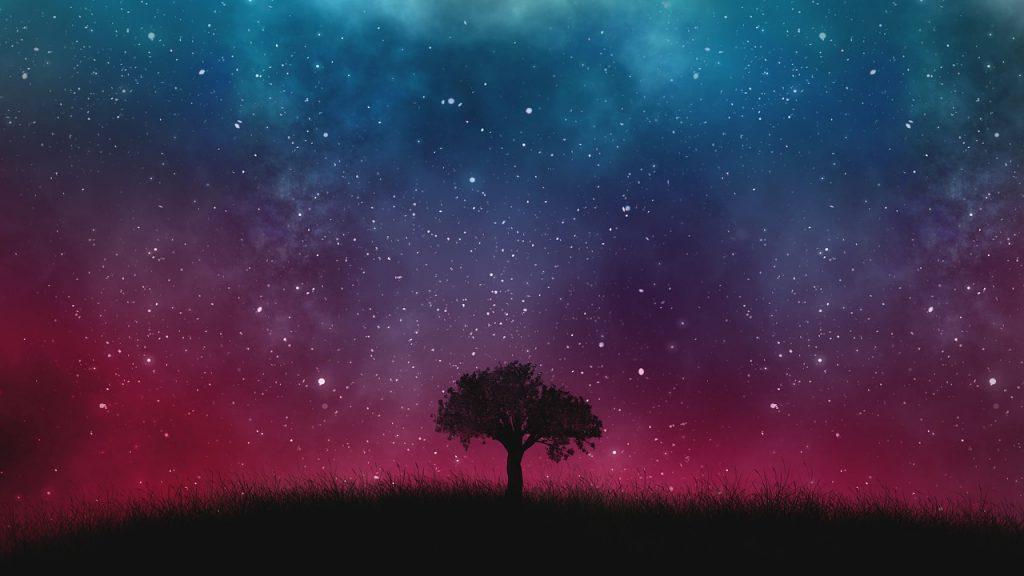 Foto des Sternenhimmels, im Vordergrund die Silhouette einer Wiese mit einem Baum