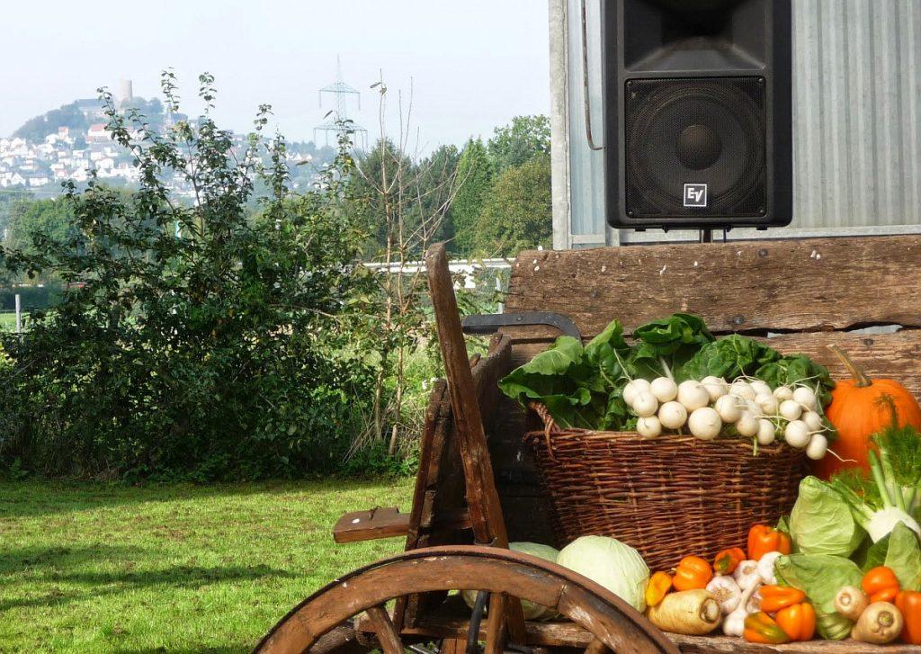 Die Erntedankfestdekoration in einem Gewächshaus der Gärtnerei Koch - und im Hintergrund der Gleiberg