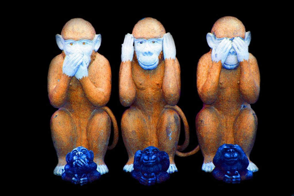 Die drei Asiatischen Affen: Nichts sagen, nichts hören, nichts sehen.