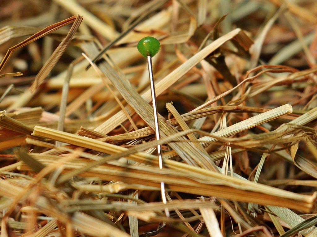 Eine Nadel im Heu- oder Strohhaufen