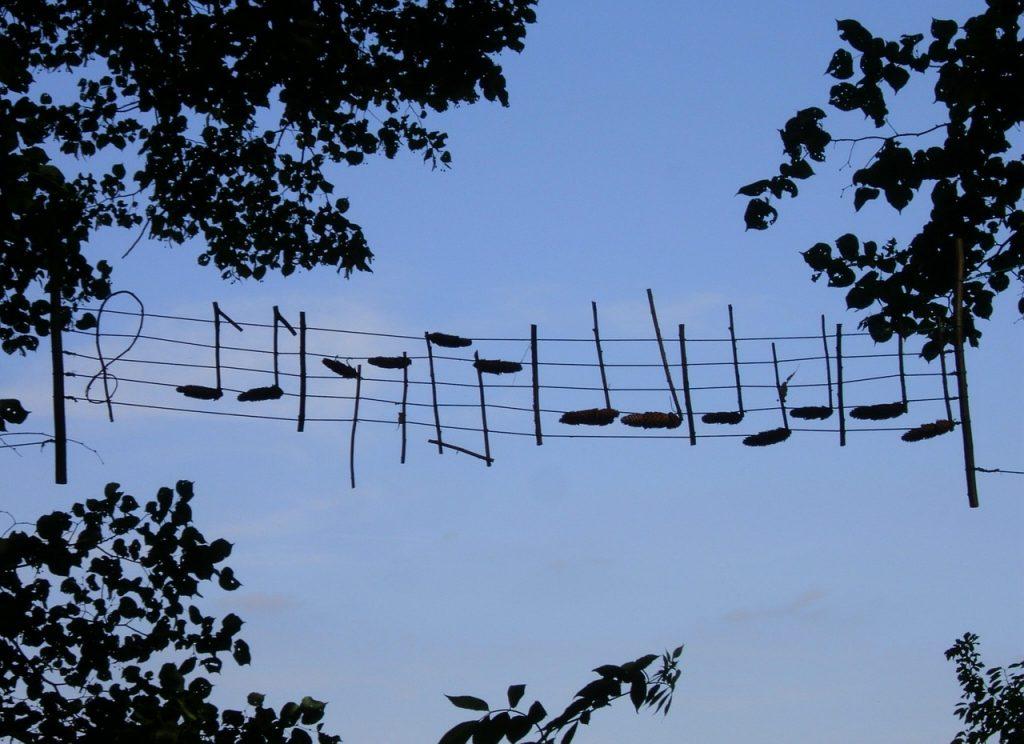 Noten aufgehängt an Notenlinien, die zwischen Bäumen aufgespannt sind, vor blauem Himmel