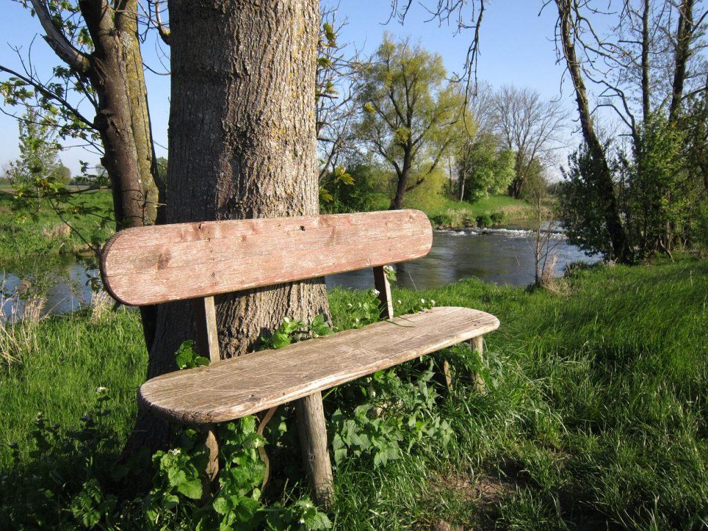 Eine Ruhebank an einem Baum an einem Bach