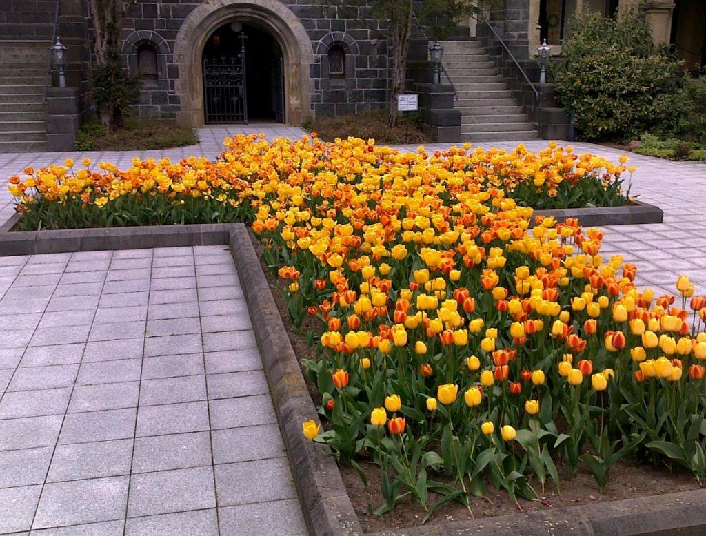 Blumenrabatte vor dem Eingang zur Friedhofskapelle Gießen in Form eines Kreuzes