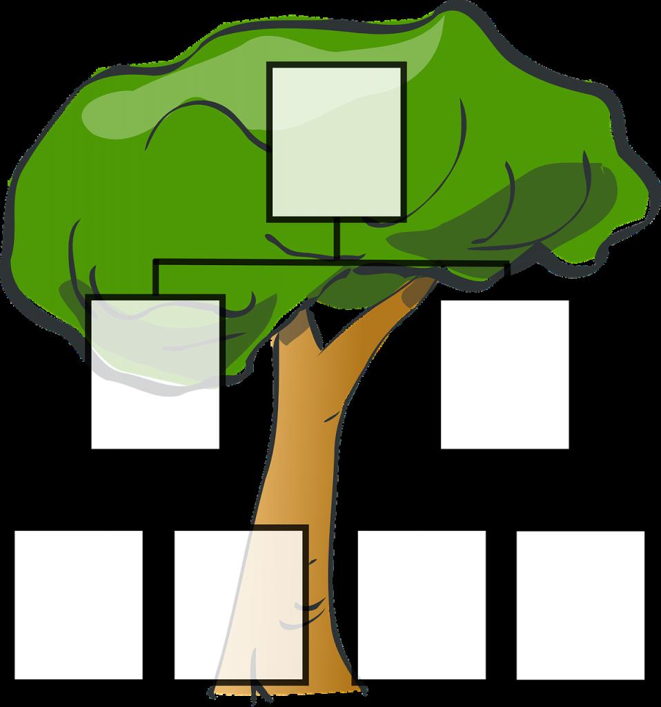 Stammbaum für eine Familie - mit leeren Abstammungstafeln vor einem Laubbaum