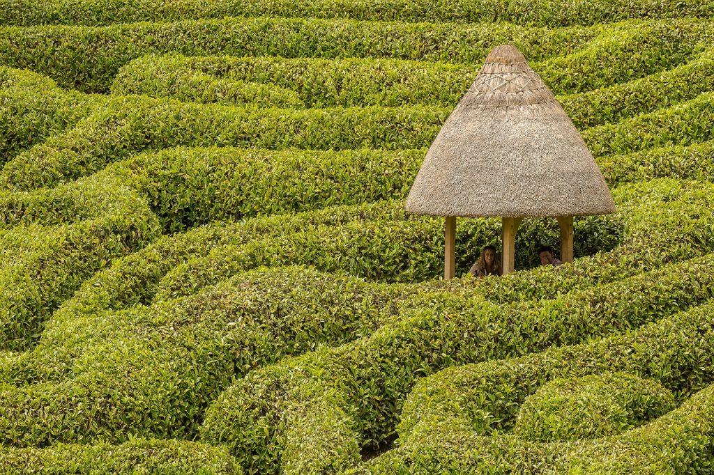 Eine reetgedeckte Hütte oder Überdachung im Labyrinth von Glendurgan
