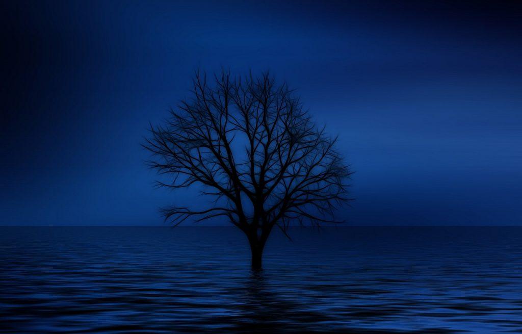 Ein Baum ohne Blätter steht mitten im Meer inmitten dunkelblauer Dämmerung