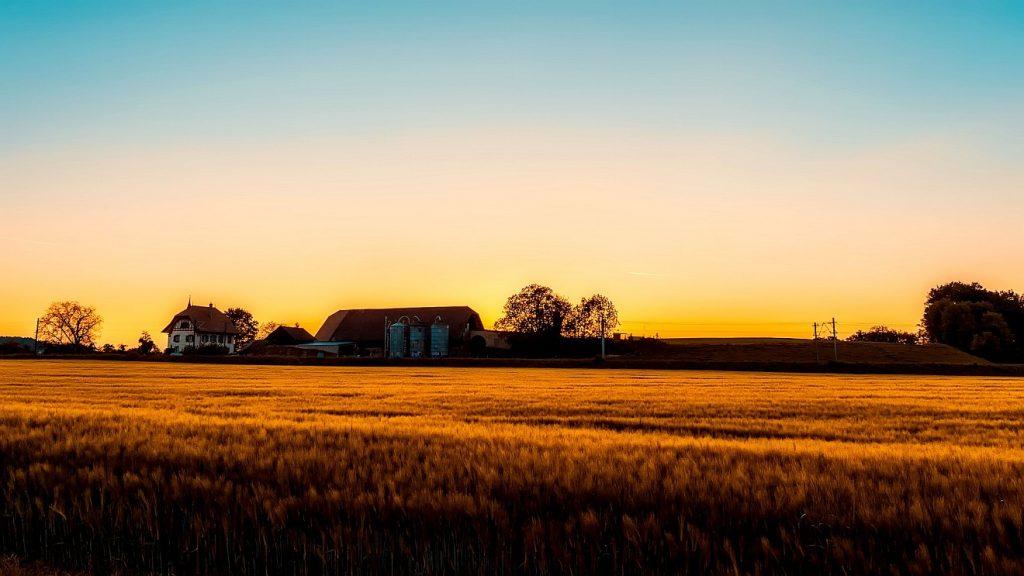 Ernten ohne Aufhören: Ein Bauernhof in der Abenddämmerung