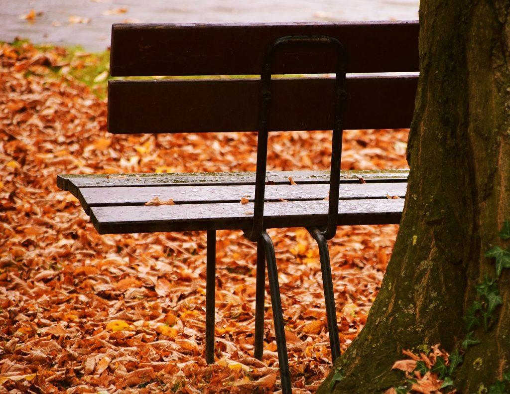 Tod auf der Rentnerbank: eine leere Bank, von Herbstlaub umgeben