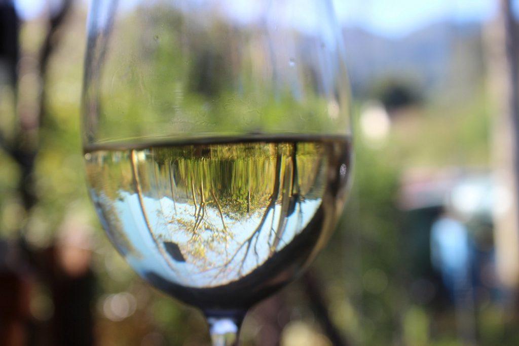 Ein Glas Wein, in dem sich eine grüne Landschaft spiegelt