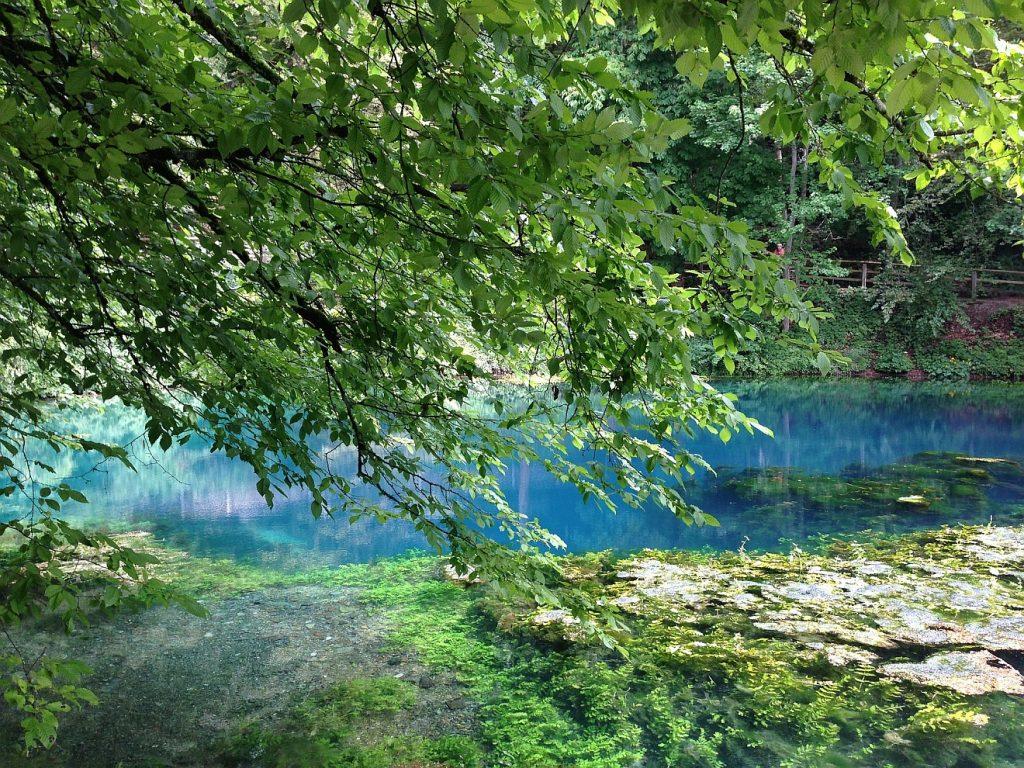 Mensch mit reichen Kraftquellen: Eine grüne Baumkrone vor dem Blautopf bei Blaubeuren