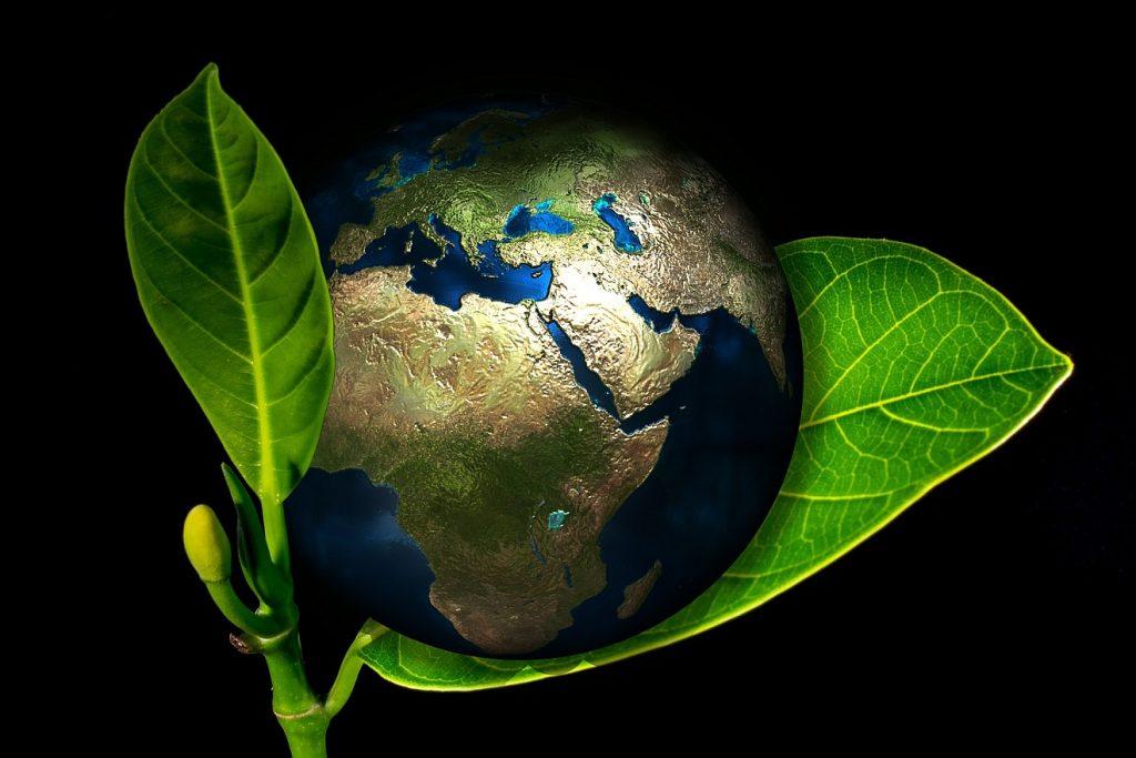 Einsatz für Mensch und Umwelt: Eine Erdkugel, umschmiegt von einem Zweig mit grünen Blättern
