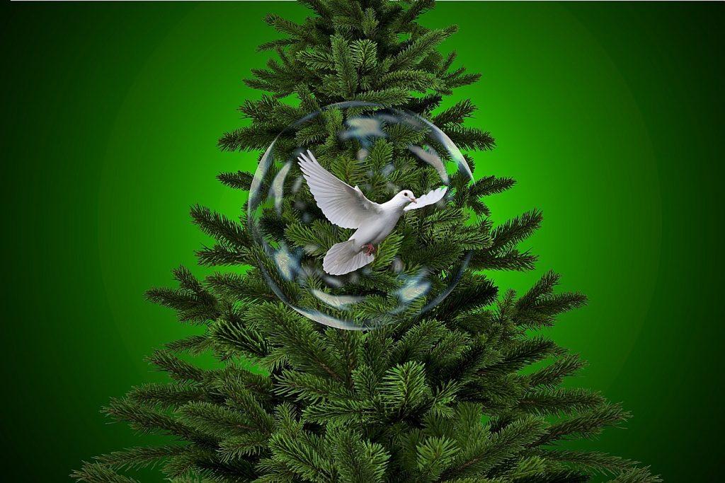Ein Weihnachtsbaum mit einer Friedenstaube - kann man an Heiligabend über Hesekiel predigen?